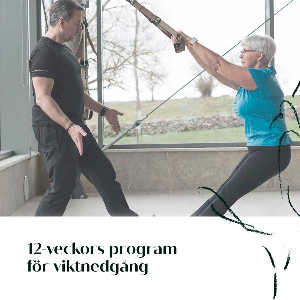 12-veckors program for viktnedgang
