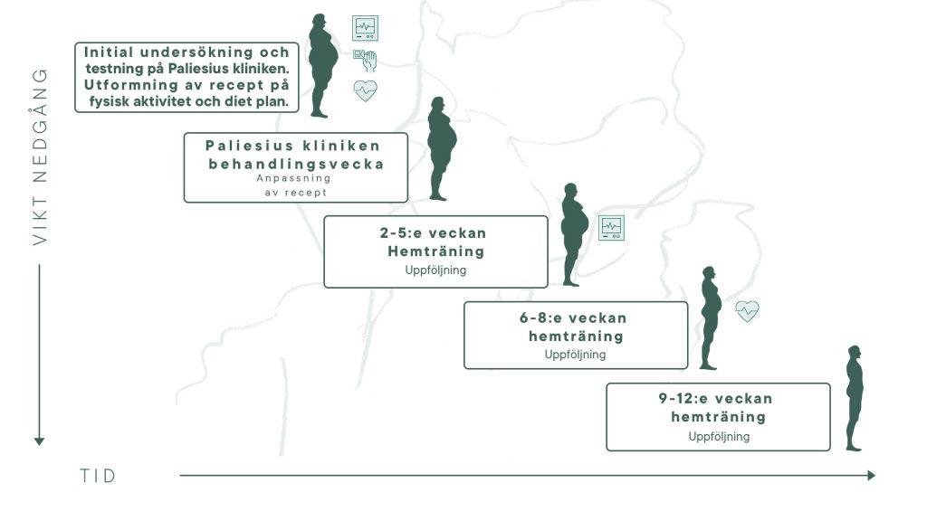 12-veckors program for viktnedgang main