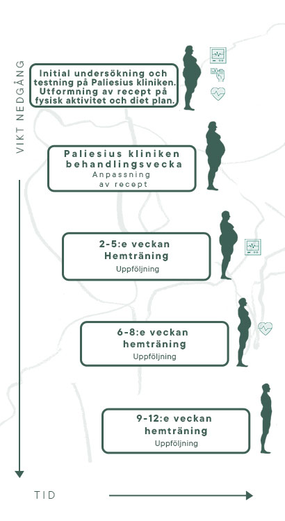 12-veckors program for viktnedgang mobile