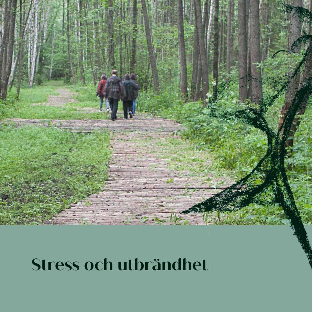 Stress och utbrandhet